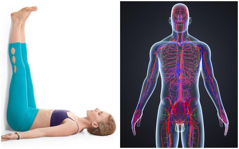 www.spiritselfhealth.com-exercises to improve circulation
